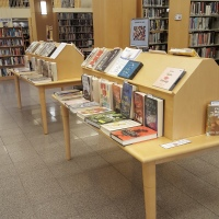 Our January Book Displays